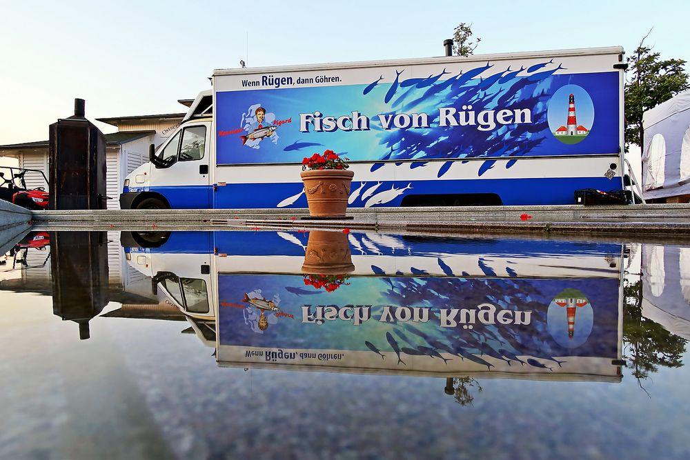 Fisch von Rügen...