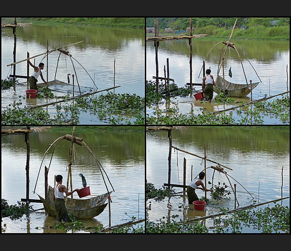 Fischen am Bago River