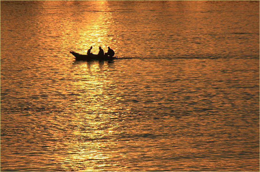 Fischen im Goldwasser