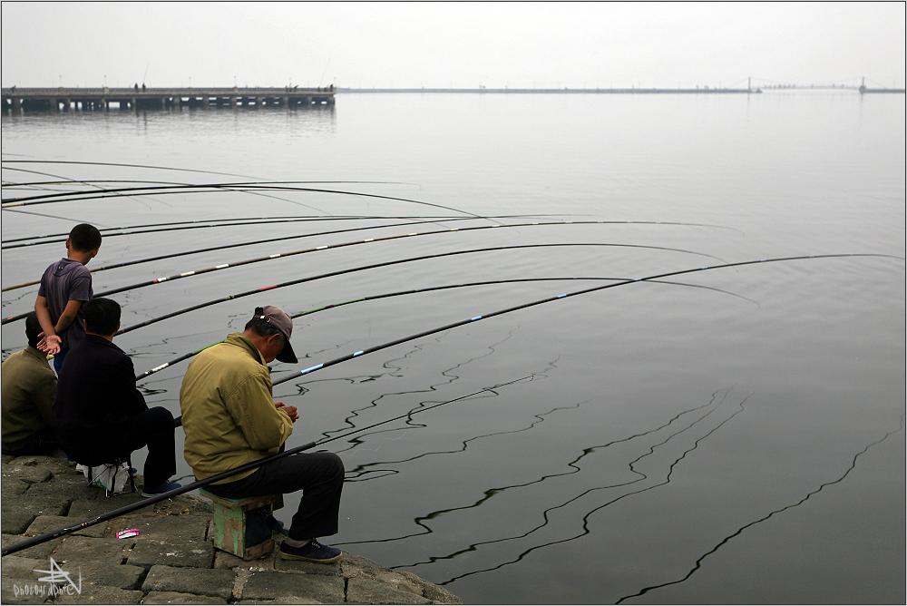 """"""" Fischen in der Frühe in Wonsan"""""""