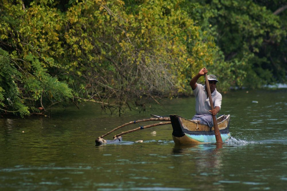 Fischer auf dem Bentota (Sri Lanka)