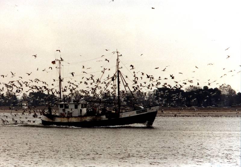 Fischer auf der Heimfahrt