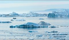 fischer in der arktis