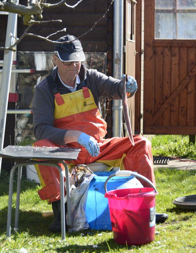 Fischer macht den Aal sauber