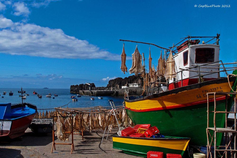 Fischerboot am Hafen Camara de Lobos