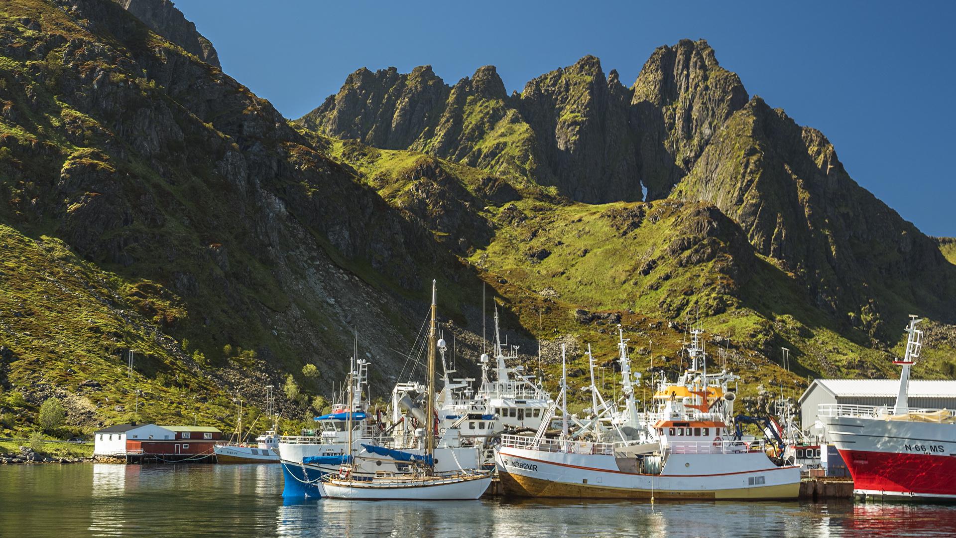 Fischereihafen auf den Lofoten