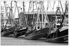 Fischereihafen Husum