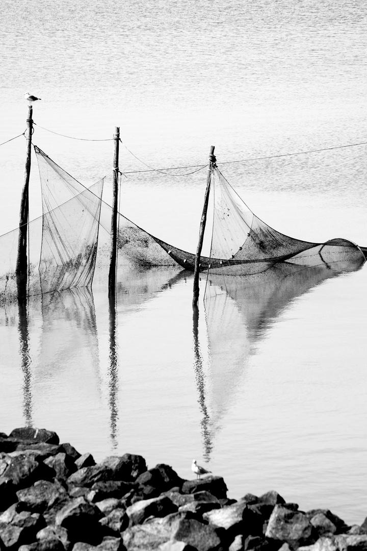 Fischernetze in Holland