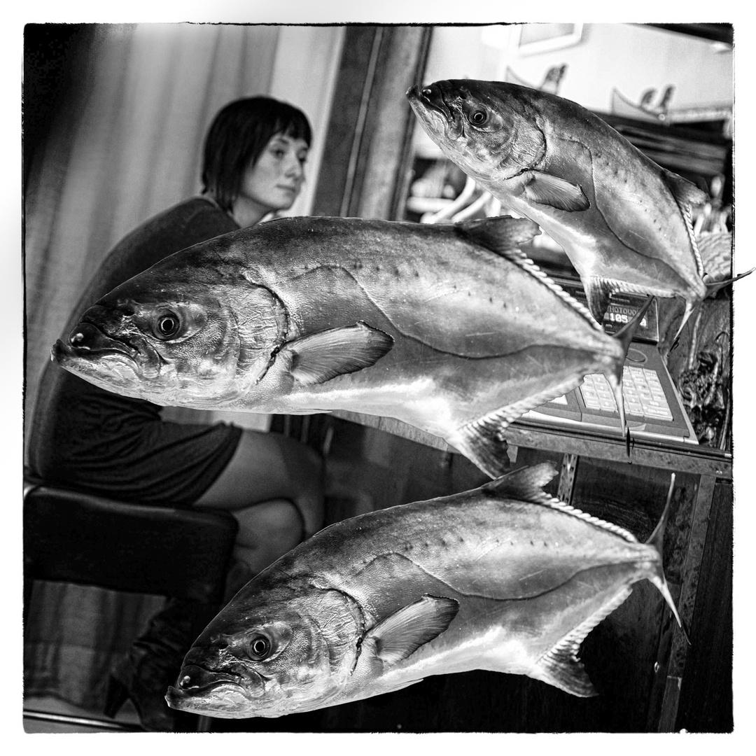 Fischfröhlich