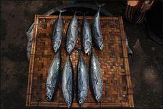 * Fischmarkt *