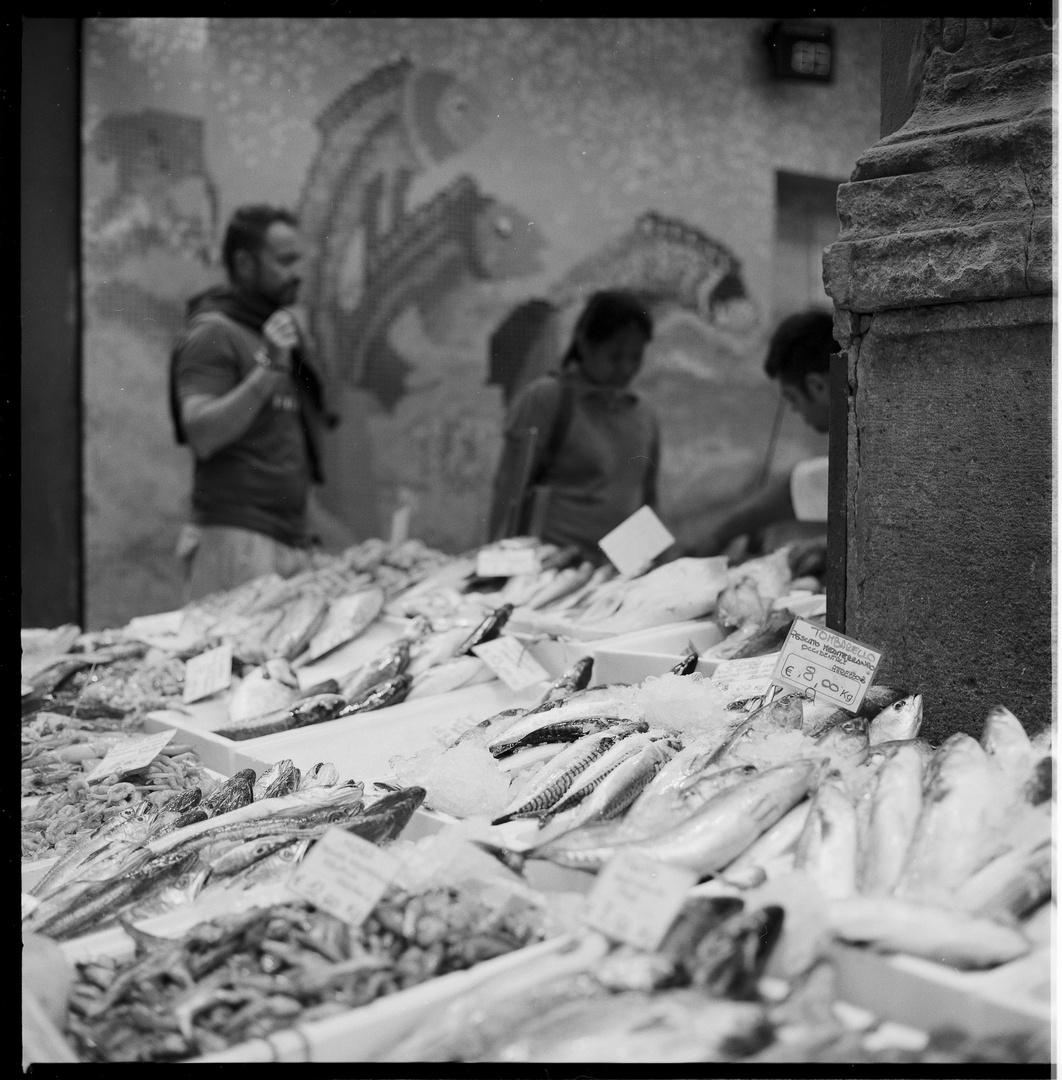 Fischmarkt in Bologna