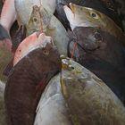 Fischmarkt in Victoria - Mahé