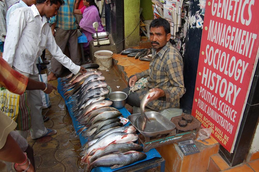 Fischverkäufer vor einem Buchladen