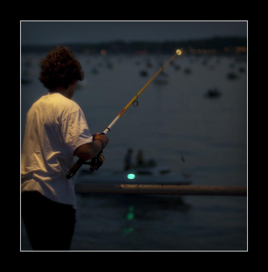 Fish at night