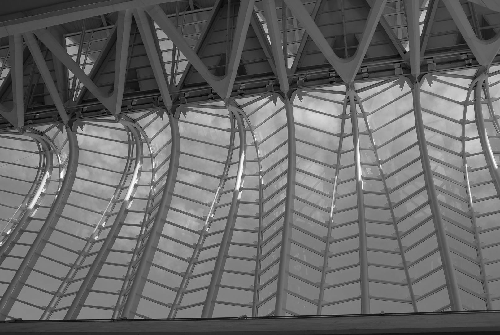 fish roof