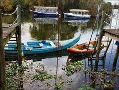Fisher and travel boats