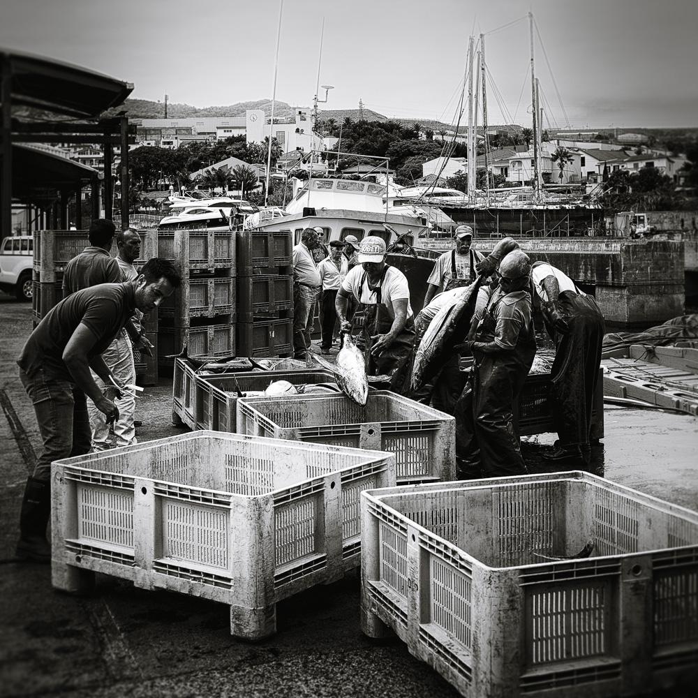 fishermen 15