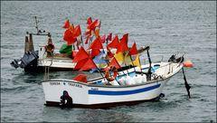 Fishing boats on Tejo River