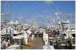 Fishing Contest 5