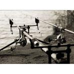 fishing II