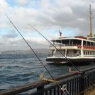 Fishing in Bosphorus