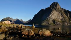 Fjord Art
