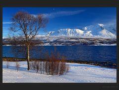 Fjordaussicht