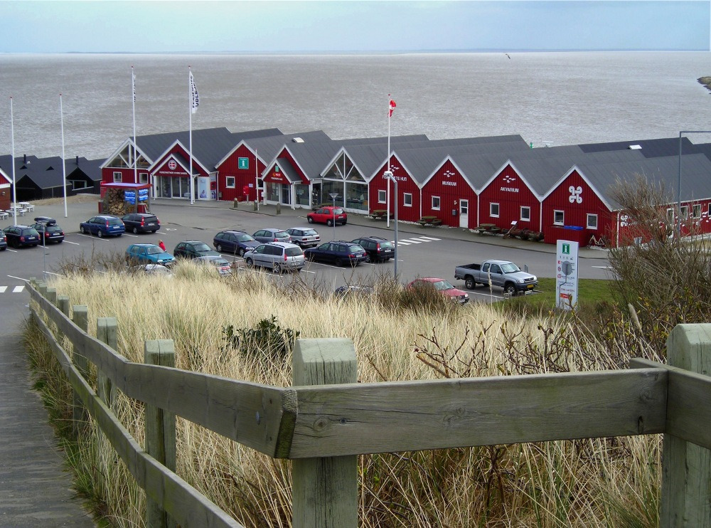 Fjordblick (1)