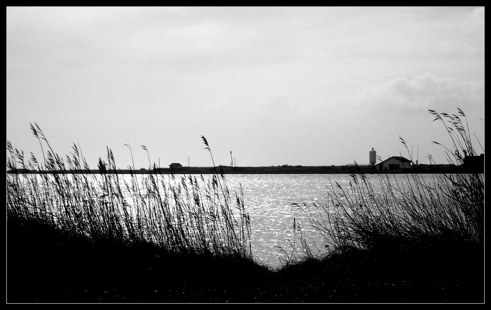 Fjordblick (3)