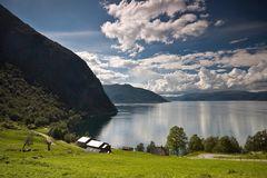Fjordblick Sognefjord