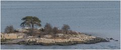 Fjordinsel