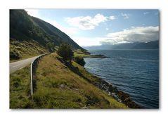 Fjordufer im Gegenlicht