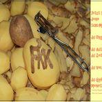 """FKK """"frische Küchenkartoffeln"""""""