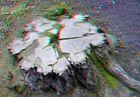 flaches 3D-Foto