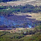 Flächenbrand in der Senne