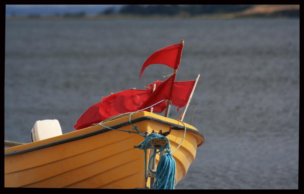 Flaggenboot