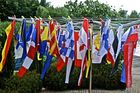 Flags washday