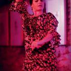 Flamenco #2