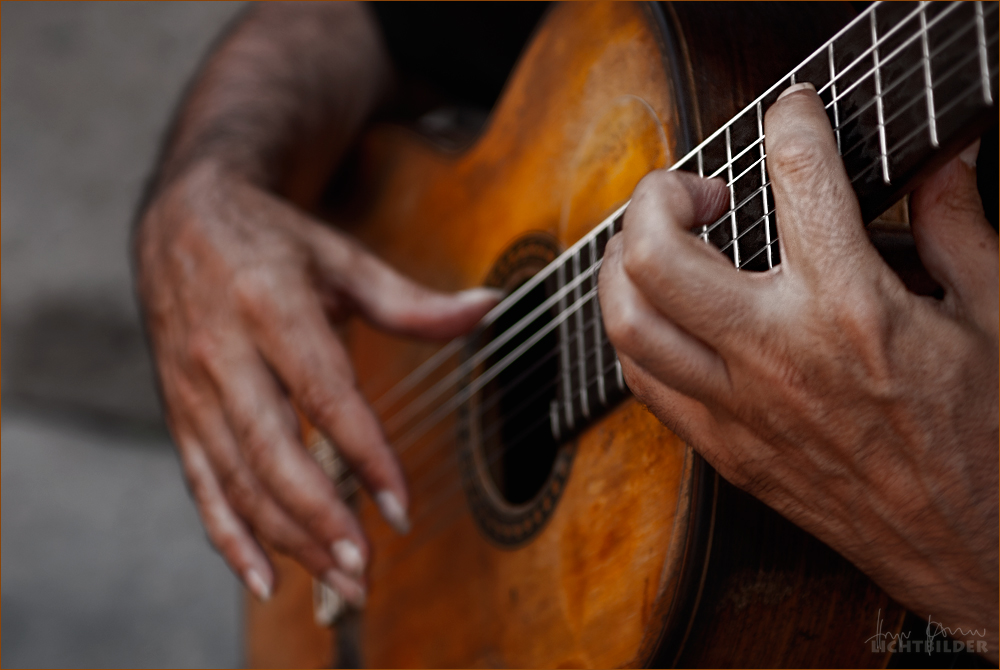 | flamenco |