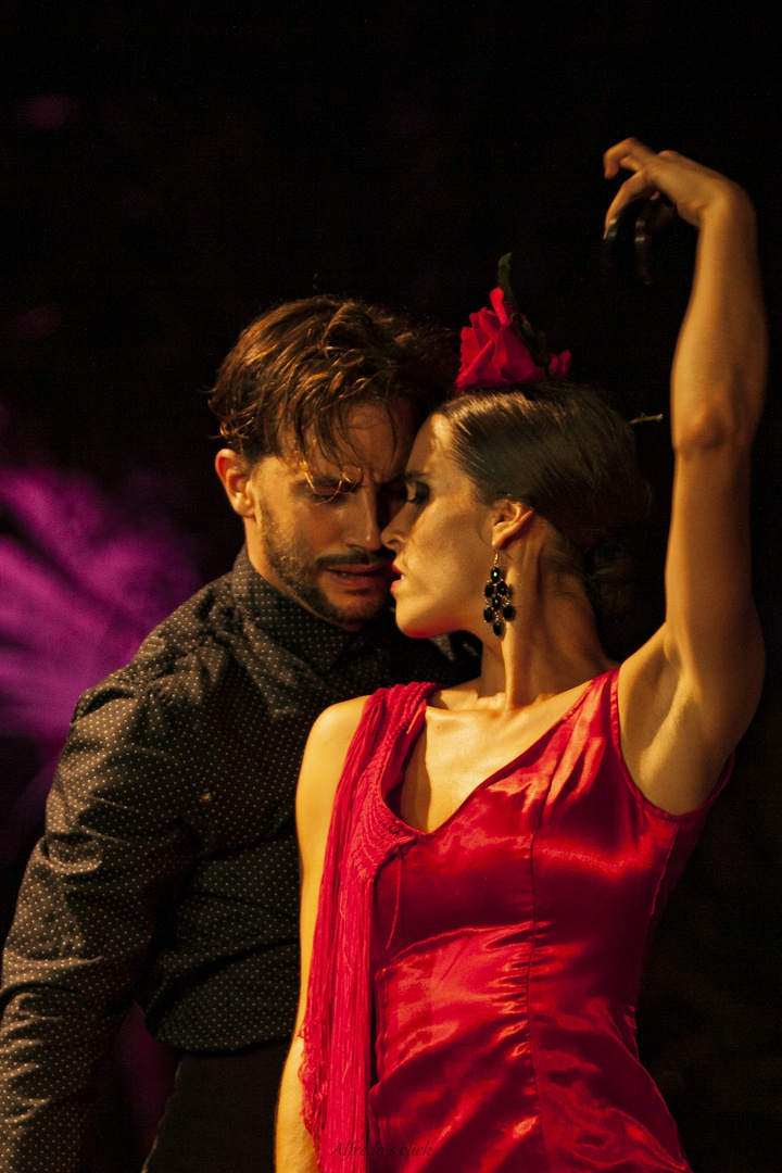 Flamenco Abend Gran Canaria_7598