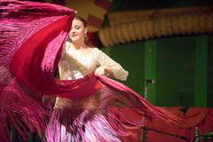Flamenco dancer - The motion