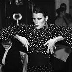 Flamenco evening .