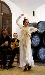Flamenco in einer Bodega