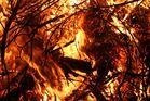 FLAMME AN !!! - :o) unser Osterfeuer
