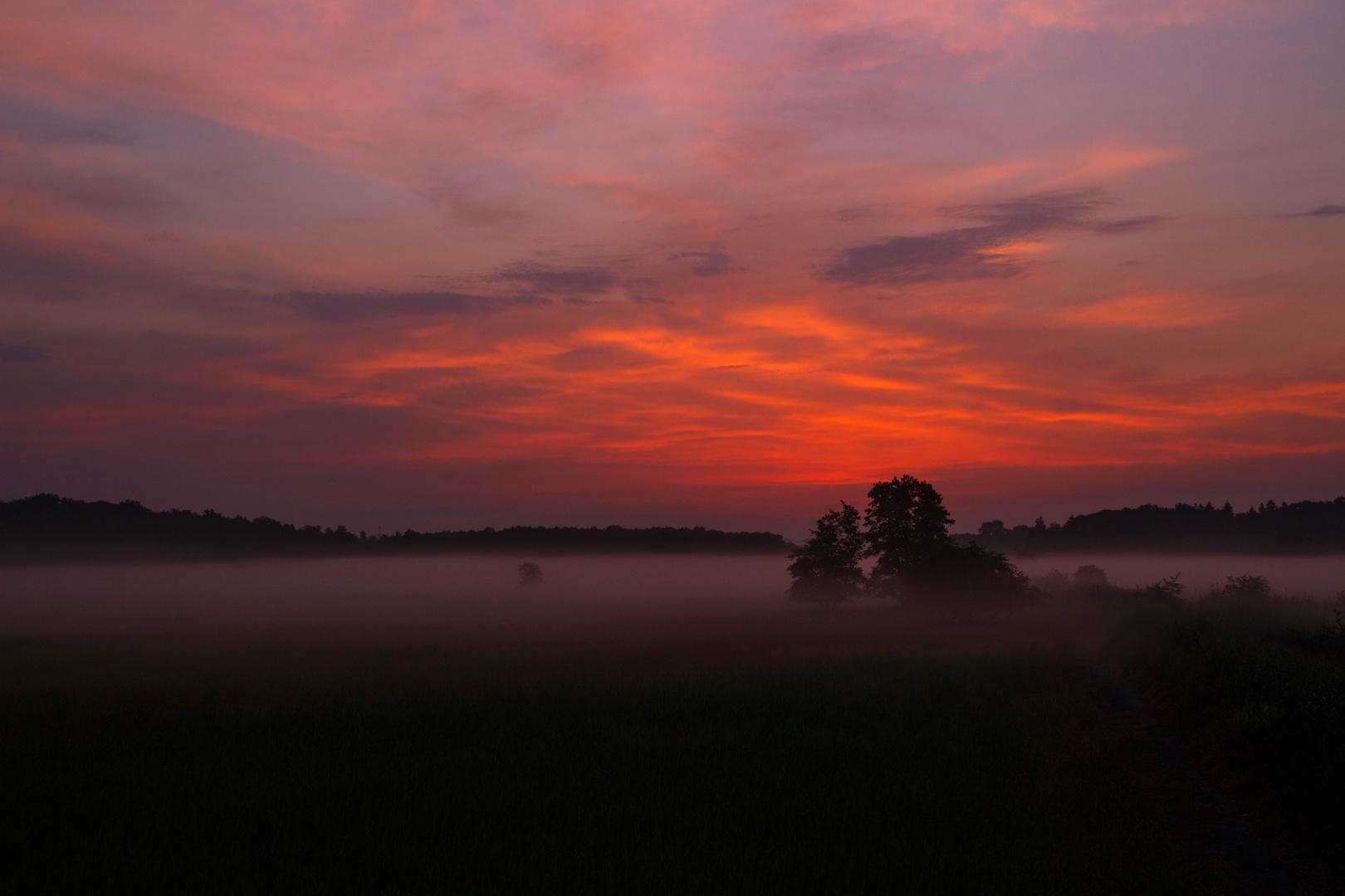 Flammen am Morgenhimmel