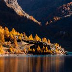 Flash d'autunno....