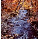 Flatbrook River at Stokes State Forest