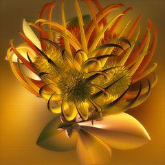 Fleischfressende Pflanze - Incendia -