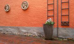 Flensburg Hof-Impression Rote Straße
