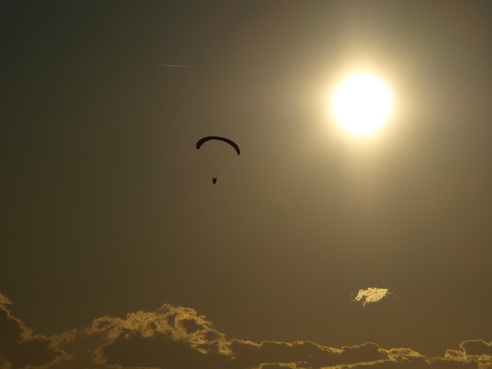Fliegen in die Abendsonne